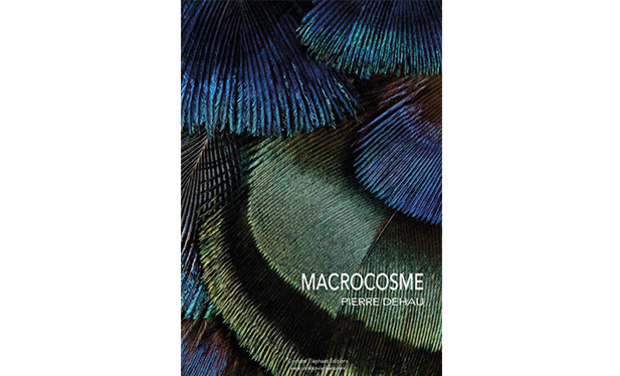 Project visual MACROCOSME, un livre de Pierre Dehau