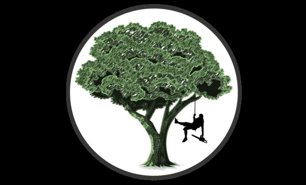 Visuel du projet Un camion pour Arboréo, arboriste-grimpeur passionné et écoresponsable