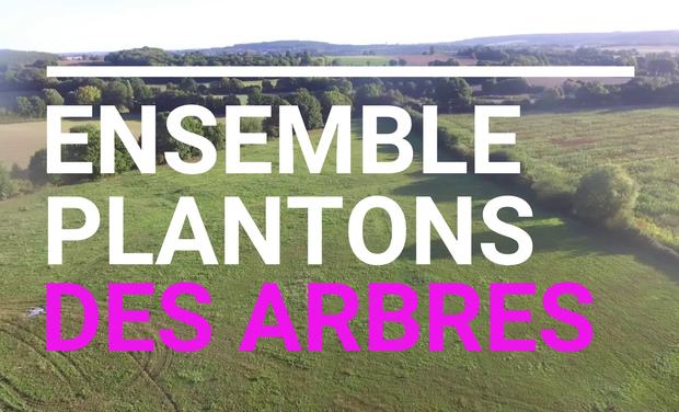 Project visual Plantons des arbres à la Buchère