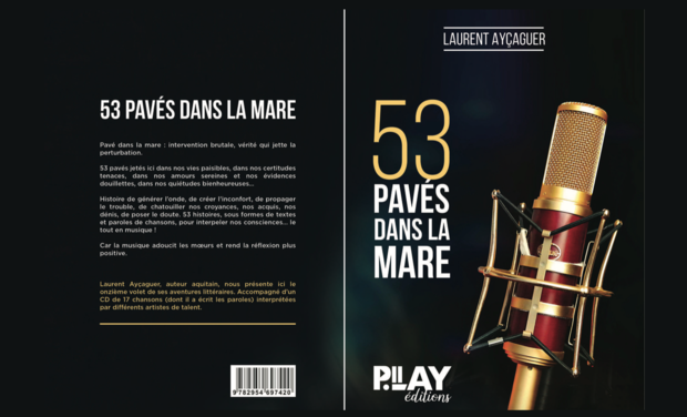 Project visual 53 pavés dans la mare