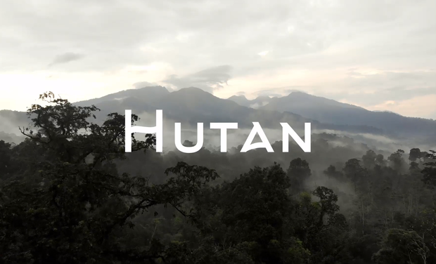 Project visual Hutan, un documentaire sur la déforestation en Indonésie