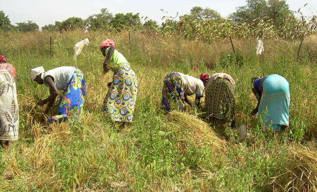 Visuel du projet Forage pour des femmes au Burkina Faso