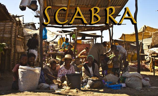 Visueel van project Scabra