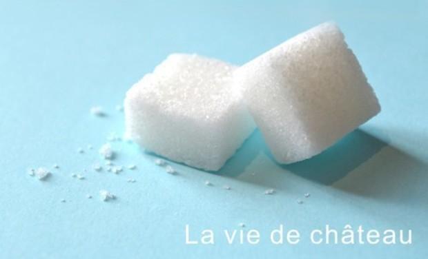 Large_la_vie_de_ch_teau_