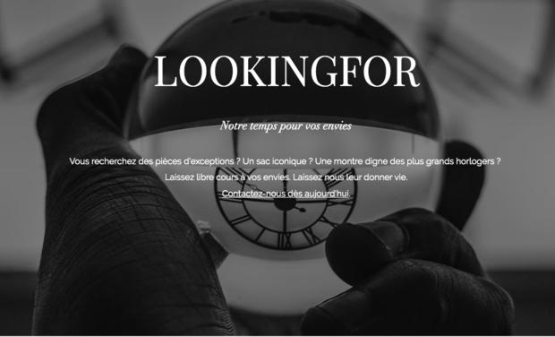 Project visual LOOKINGFOR : le premier moteur de recherche humain