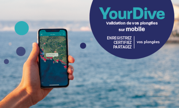 Visueel van project YourDive - Validation de vos plongées sur mobile
