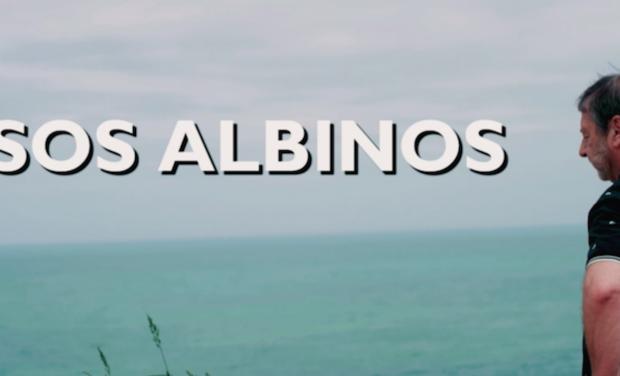 Project visual SOS ALBINOS