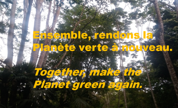 Visuel du projet La Evidencia