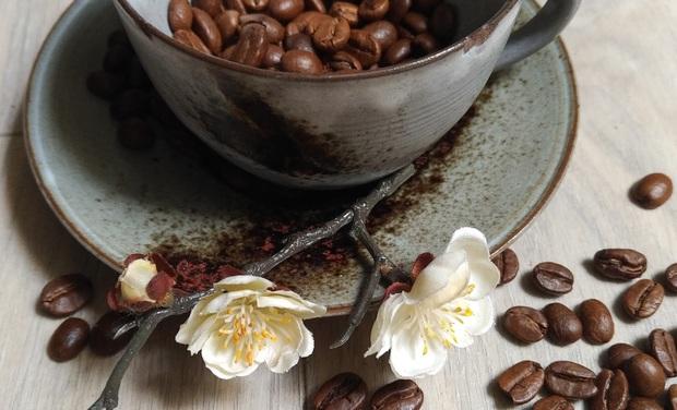 Visuel du projet Blossom Café: votre nouveau café - salon de thé à Nantes!