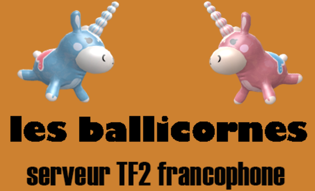 Project visual -serveur- les ballicornes