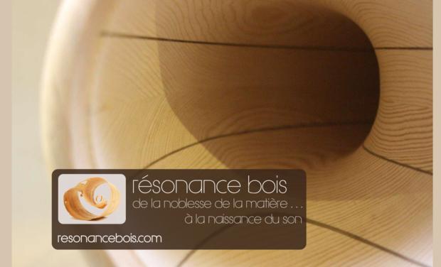 Visueel van project Résonance bois : de nouveaux instruments de musique
