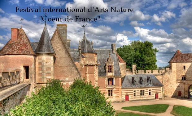 Project visual Festival international d'arts Nature