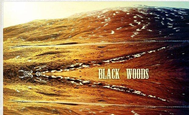 Visuel du projet 2ème album des Black Woods