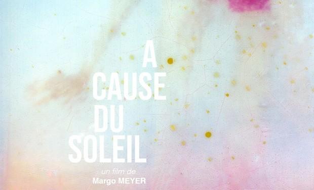 Project visual A Cause du Soleil, un film de Margo Meyer