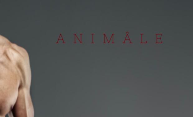 Visuel du projet ANIMÂLE SHORT FILM