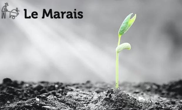 Project visual Le Marais