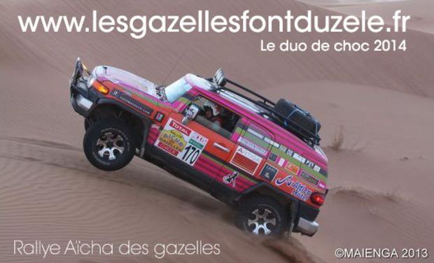 Visuel du projet Les gazelles font du zèle