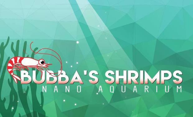 Project image Bubba's Shrimps - Nano aquarium