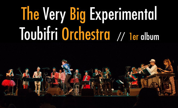 Project visual The Very Big Experimental Toubifri Orchestra / 1er album !