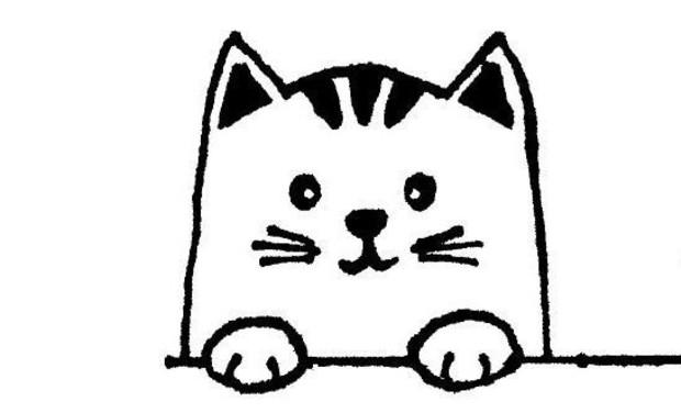 Visueel van project Chez Mamie Chat - Pension pour chats