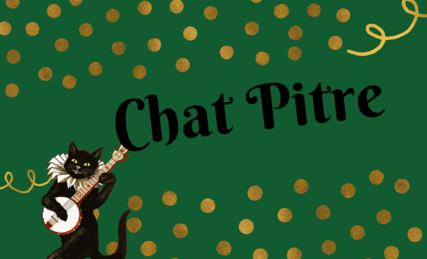 Project visual Chat Pitre