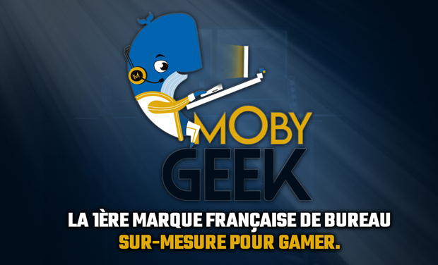 Project visual Moby-Geek