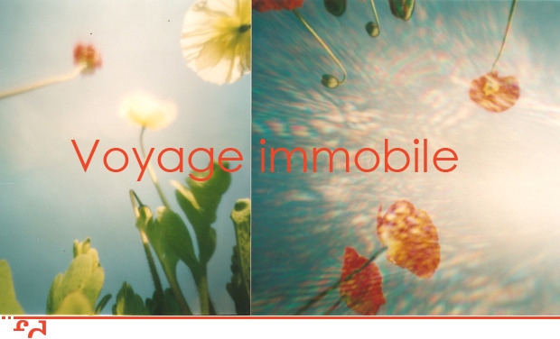 Project visual Voyage immobile - Méditations photographiques
