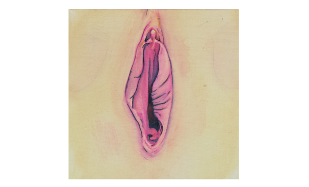 Visueel van project Super Vulva