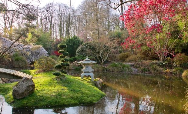 Image du projet Parc botanique de Haute Bretagne, un patrimoine botanique en danger