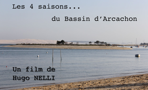 Project visual Le bassin et sa vie