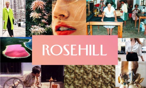 Visuel du projet The Rose Hill Project