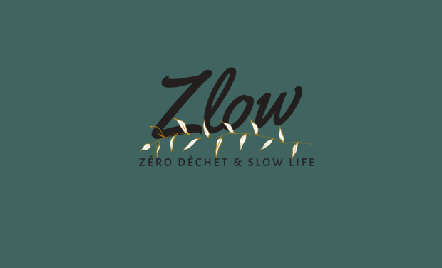 Visuel du projet Zlow