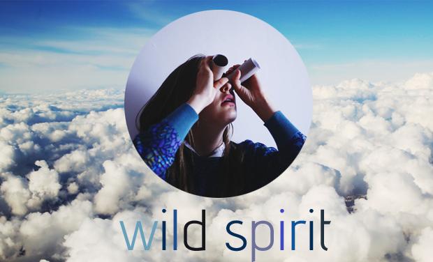 Large_wildspiritprojet