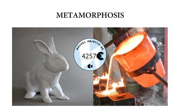 Visueel van project METAMORPHOSIS