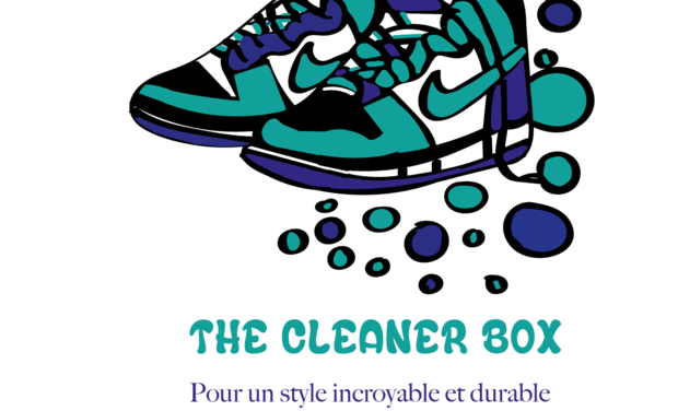 Visuel du projet The Cleaner Box