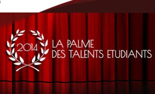 Visuel du projet Soutien à la Palme des Talents Etudiants 2014