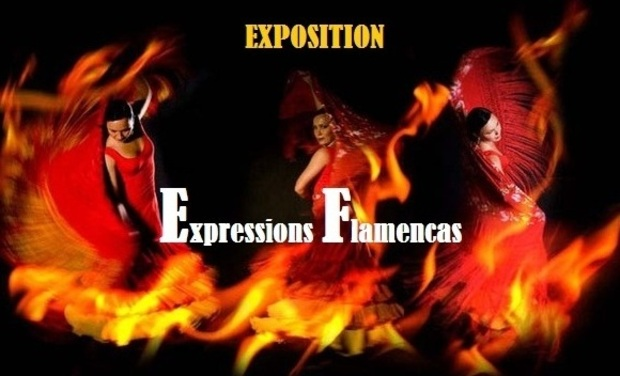 Project visual exposition photographique sur le flamenco