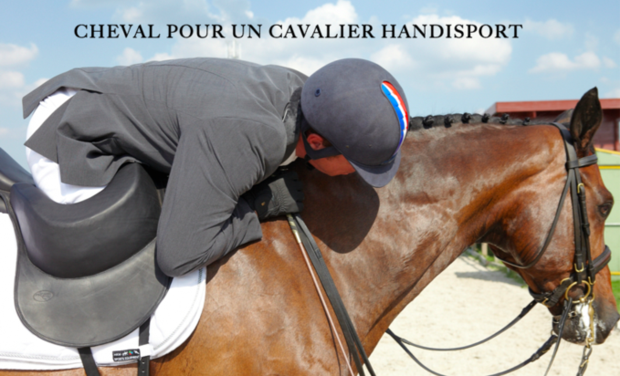 Visuel du projet Cheval pour un cavalier Handisport