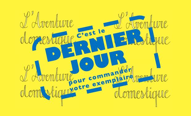 Project visual L'Aventure domestique - journal de confinement de Paul de Vulpillieres