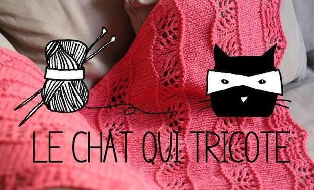 Visuel du projet Une boutique pour Le Chat qui tricote