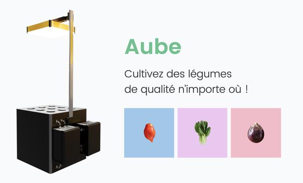 Image du projet Avec Aube, cultivez des légumes anciens & exotiques n'importe où !