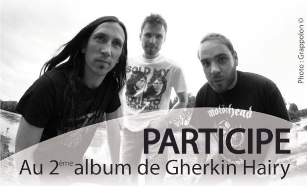 Visuel du projet 2eme Album de Gherkin Hairy