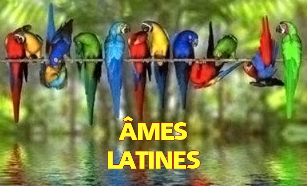Large_ames-latines-2-fustian