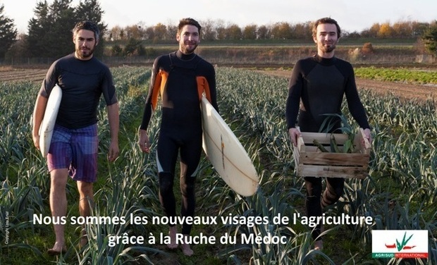 Project visual La Ruche du Médoc