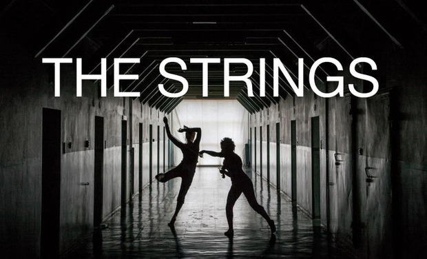 "Visuel du projet Projet ""The Strings"""