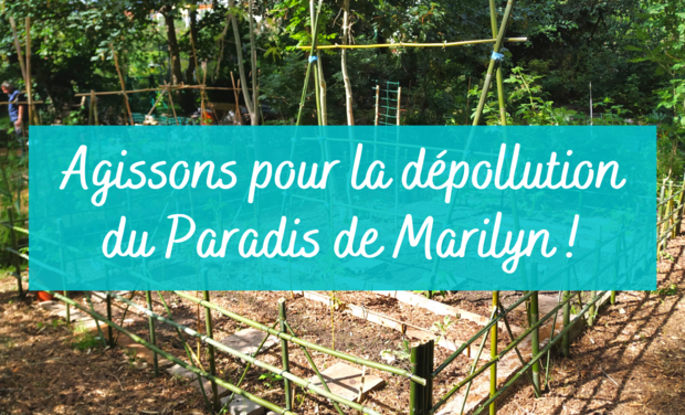 "Project visual Participons à la dépollution du ""Paradis de Marilyn"" !"