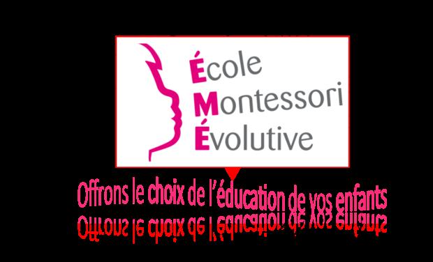 Project visual Montessori pour les 6-9ans