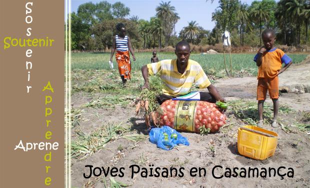 Visuel du projet Païsans de Casamança