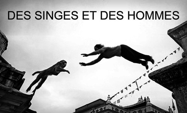 Large_des_singes_et_des_hommes