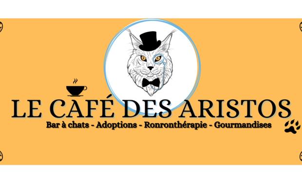 Visuel du projet Le Café des Aristos - Bar à chats
